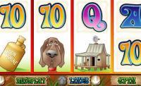 Hillbillies Slot Game