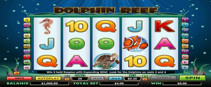 Free Dolphin Reef